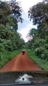 20150717-Jane-Uganda IMG_20150616_081838256_HDR