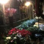 Nancy Ann flowers - Sausalito
